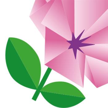 Logo-colori-simbolo